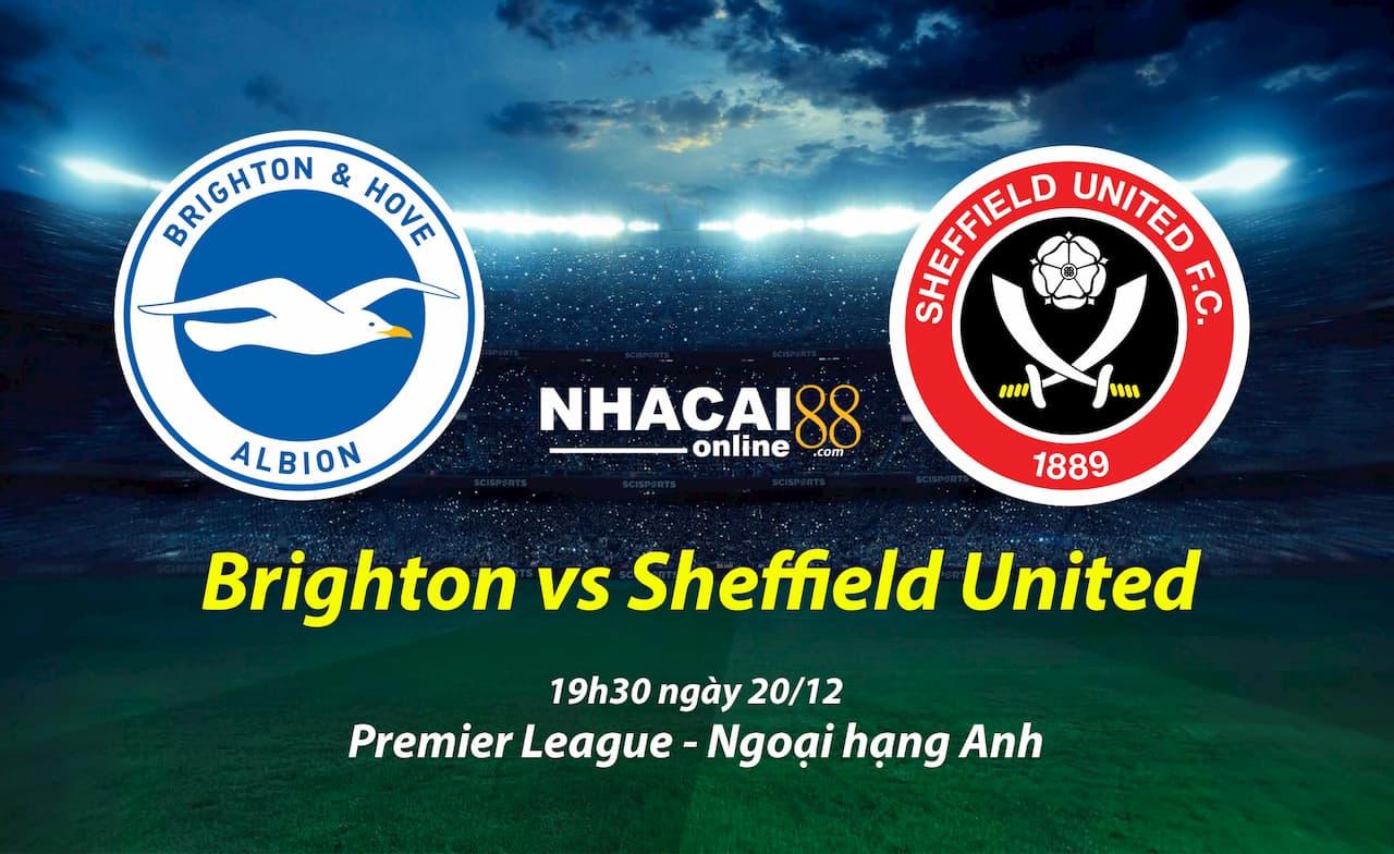 soi-keo-Brighton-vs-Sheffield-United-premier-league
